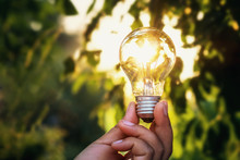 Concept Power Energy Of Solar In Nature. Hand Holding Light Bulb With Sunset