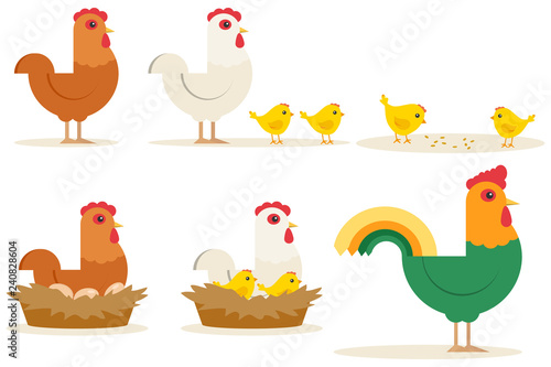 Photo Chicken vector cartoon chick character hen and rooster