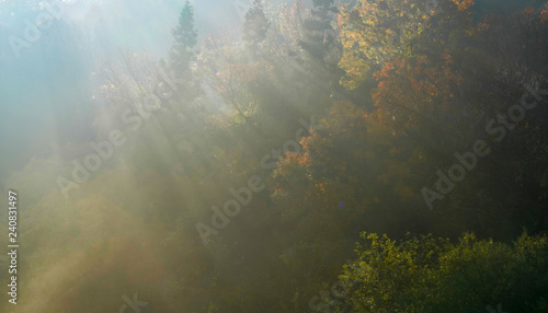 Foto auf Gartenposter Khaki 빛내림이 아름다운 세량지의 아침 풍경
