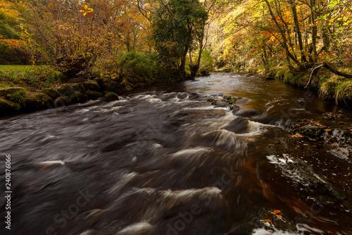 Zdjęcie XXL Rzeka Teign jesienią
