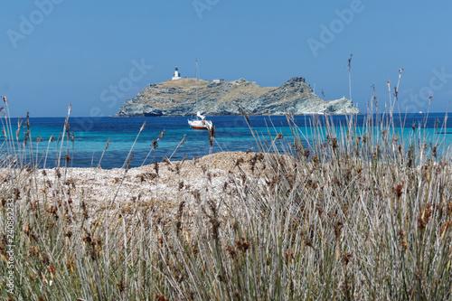 Fotografie, Obraz  Wyspa z latarnią morską u wybrzeży Korsyki
