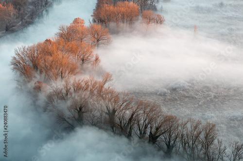 Photo Il primo raggio di sole illumina la foresta ed il fiume con nebbia