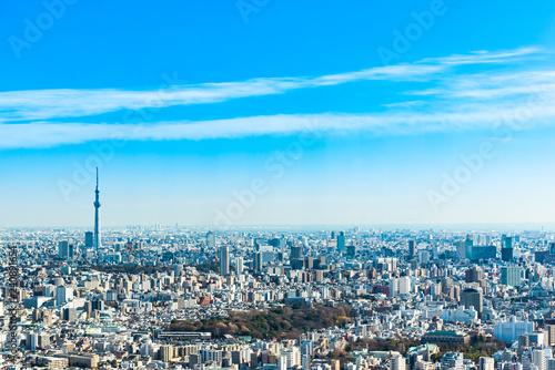 東京の都市景観 スカイツリー