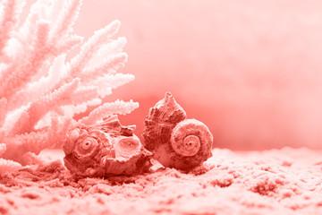 Żywy koralowy kolor roku 2019. Modny kolor.