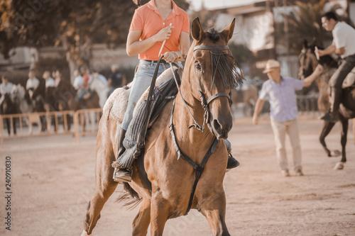 Fototapeta montando caballos andaluces en acción obraz
