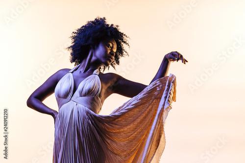 Fotografie, Obraz  Portrait of a woman in elegant pleated dress flowing behind her