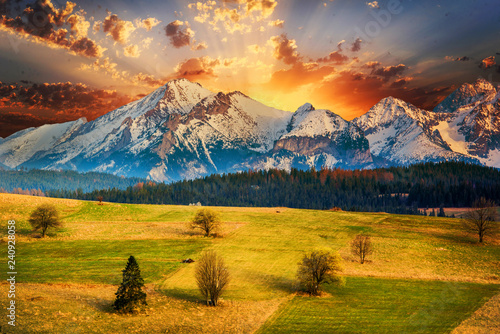 Tuinposter Honing Polish mountains Tatry at sunset