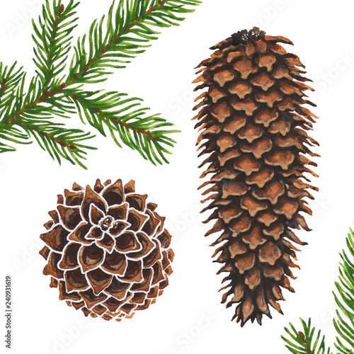 Fototapeta  Christmas tree coniferous branch and cones art