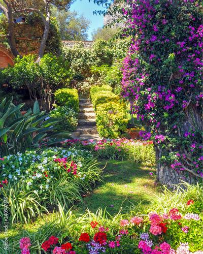 Garden on The Island of Capri Fototapeta