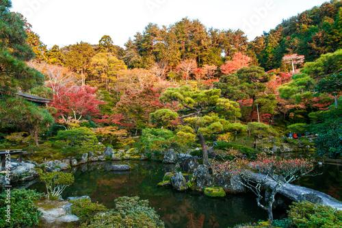 Photographie wonder garden in  japan in autumn