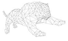 Polygonal Tiger In Attack