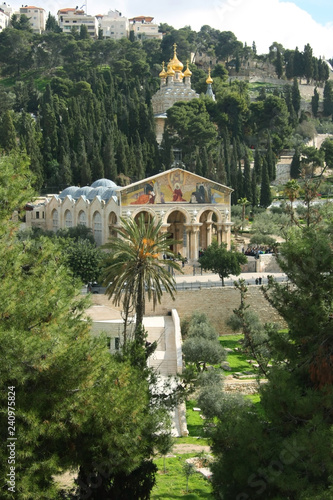 Fototapeta Temple in the Garden of Gethsemane.