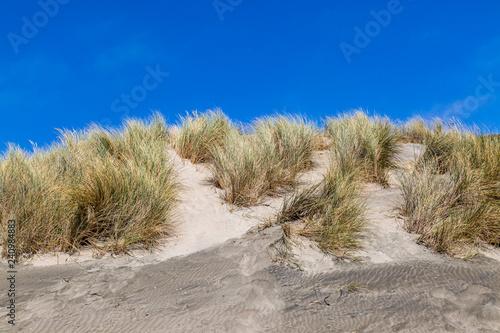 Foto  Sand dunes and a blue sky at Ocean Beach, in San Francisco, California