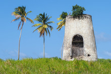 Ruins Of Old Mill In Capesterre