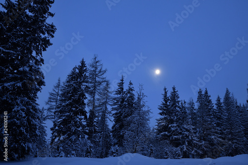 Poster Pleine lune snowy scenery of forests and hills in winter
