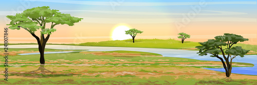 African savannah Fotobehang
