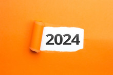 Surprising Number / Year 2024 Orange Background