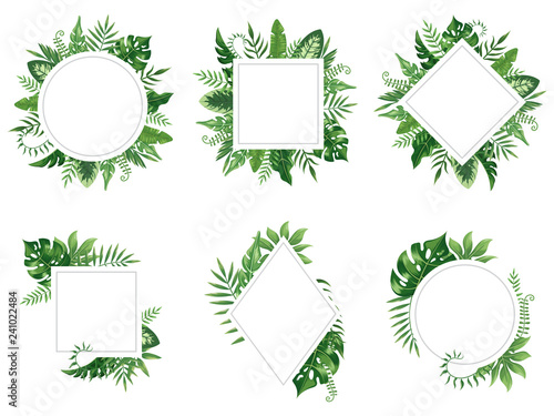 Fototapeta Exotic leaf frame. Spring leaves card, tropical tree frames and vintage floral jungle border isolated vector set obraz