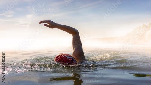 Fotomural Swimming