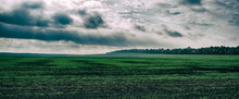 Agricultural Field And Forest Sky With Rain Clouds. Autumn Season In The Countryside.