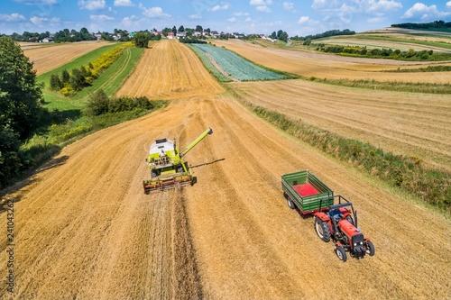 Fototapeta Kombajn i traktor podczas prac polowych obraz