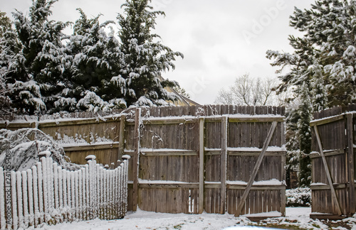 Fotografie, Obraz  Snow on picket fence intersecting privacy fence with open gate and evergreen tre