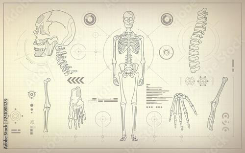 Obraz na plátně concept of health care technology, parts of skeleton in anatomical science