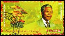 Nelson Mandela And Tricholoma ...
