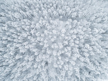 Aerial View Of A Winter Snow-c...