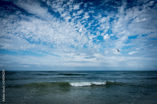 Fotografie, Obraz  Île de Ré, France, vague de l'océan à la marée montante.