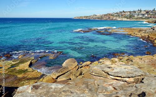 Staande foto Oceanië Bondi to Coogee coastal walk, Sydney, Australia