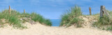 Dune by the sea, dune at the ocean with grasses and wood plows