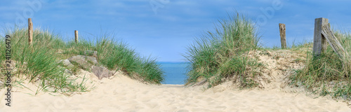 Foto  Dune by the sea, dune at the ocean with grasses and wood plows