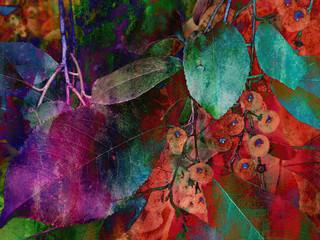 Fototapeta Liście foliage