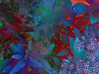 Obraz na Szkle Liście foliage