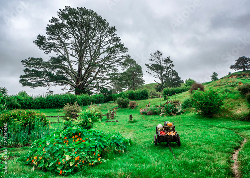 Photo  1st of December, 2018: Hobbit Meadow Shire at Hobbiton Movie Set - Matamata, Sou