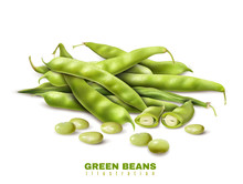 Green Beans Realistic Image