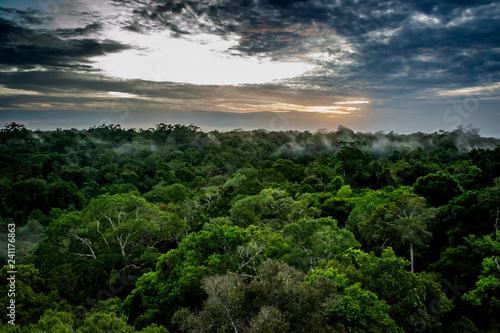 Photo Cities of Brazil - Manaus, Amazonas - Views from MUSA (Amazonian Museum)