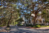 Fototapeta Sawanna - Beautiful street view in the city during a vibrant sunny day. Taken near Forsyth Park, Savannah, Georgia, United States.