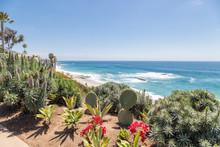 A Day In Laguna Beach, California