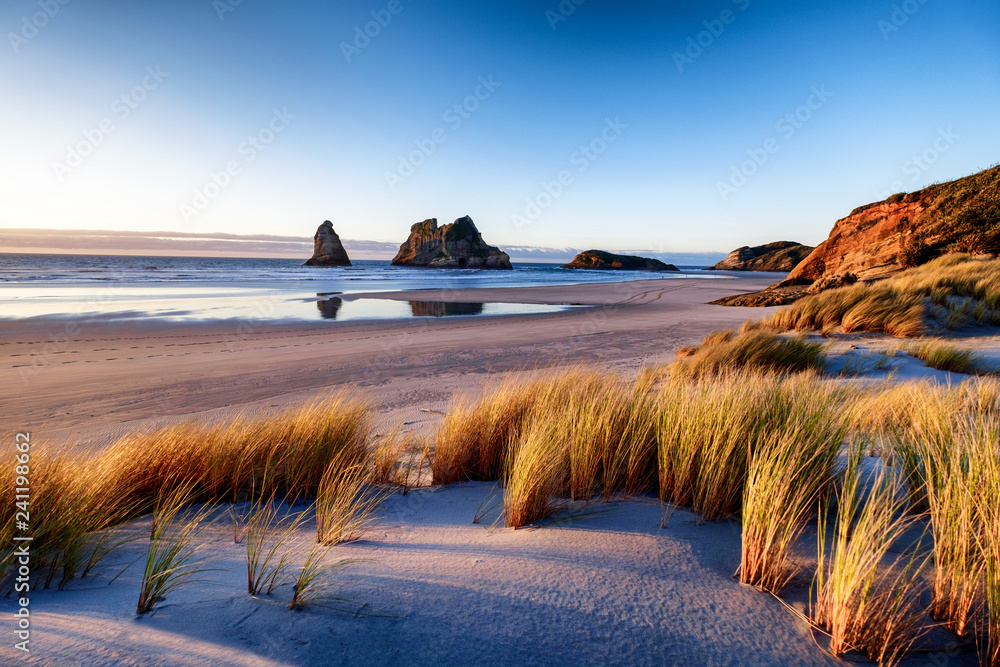 Fototapeta Explore the wild and rugged northern most point of the South Island, New Zealand. Wharariki Beach is a beautiful tourist attraction and destination. The image is peaceful, breathtaking and amazing.