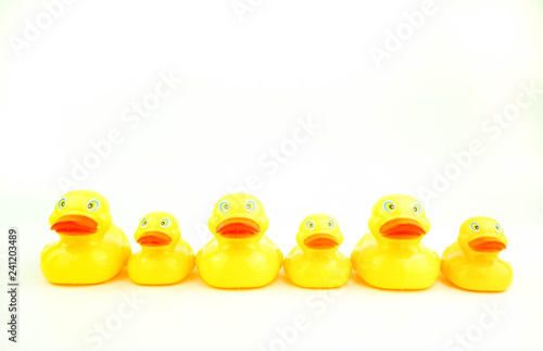 Fotografía  group of rubber ducks