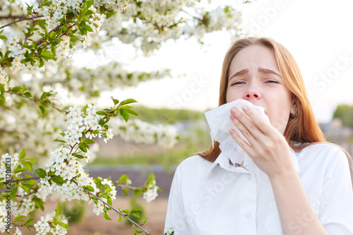 Outdoor shot of displeased Caucasian woman feels allergy, holds white tissuue, stands near tree with blossom, feels unwell, sneezes all time Canvas Print