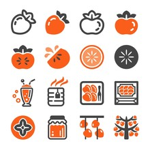 Persimmon Icon Set,vector And ...