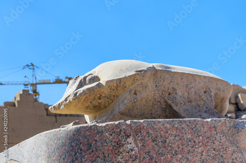 Foto op Aluminium Historisch mon. Statue of the scarab beetle in Karnak temple. Luxor, Egypt