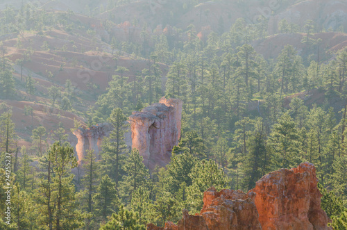 Fotografie, Obraz  Hoodoo Rock Formations in Morning Mist, Bryce Canyon National Park, Utah