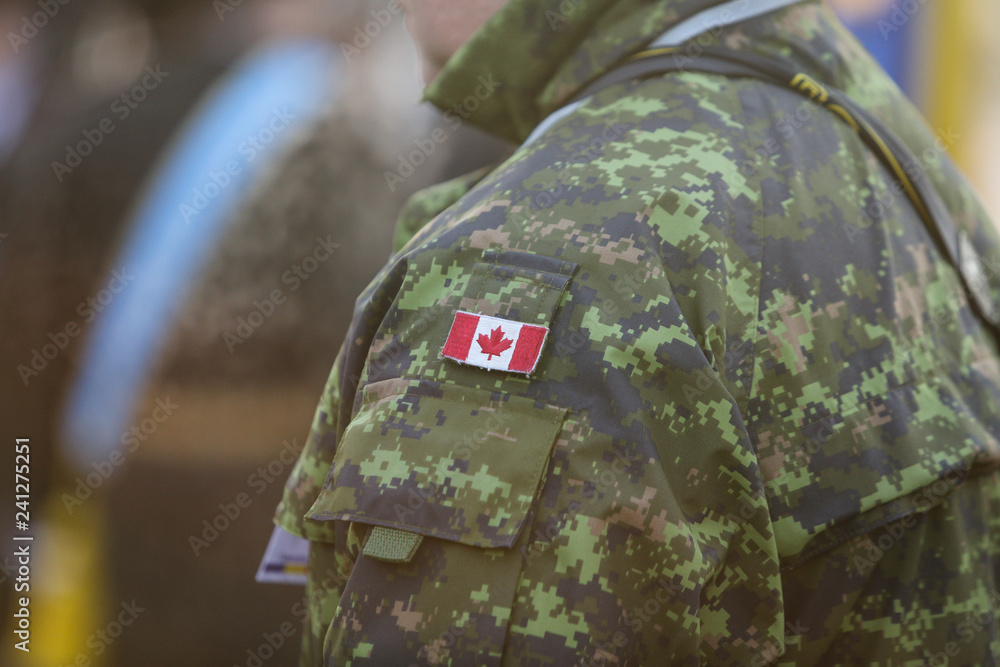 Fototapeta Details with the uniform and flag of Canadian soldiers