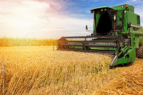 Fotografiet Harvesting wheat harvester on a sunny summer day