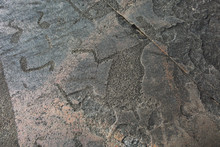 Petroglyph Moose On Cape Besov Nose. Rock Paintings Of Lake Onega.