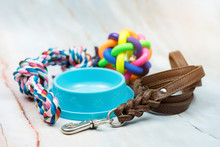 Pet Supplies Concept.  Pet Leather Leashes, Brush And Rubber Toy.